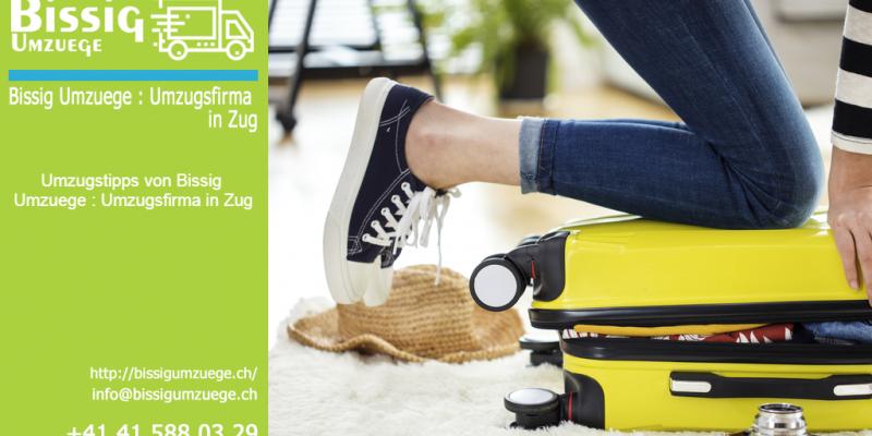 Umzugstipps | Bissig Umzuege : Umzugsfirma in Zug