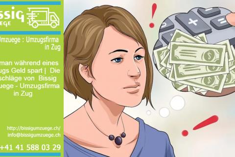 Wie man während eines Umzugs Geld spart | Die Ratschläge von  Bissig Umzuege – Umzugsfirma in Zug